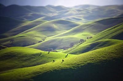 California Mountains