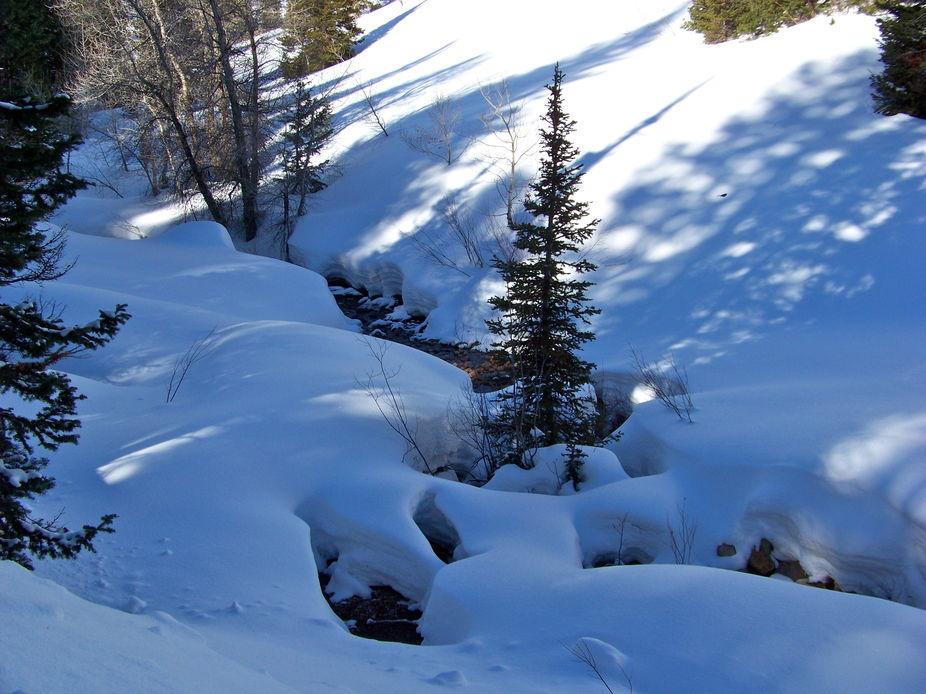blue shadows on Cobabe Creek