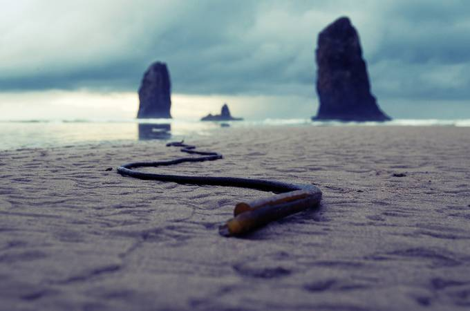 Cannon Beach by wluna2 - Clever Angles Photo Contest