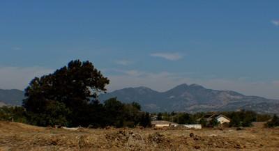 cordelia hills