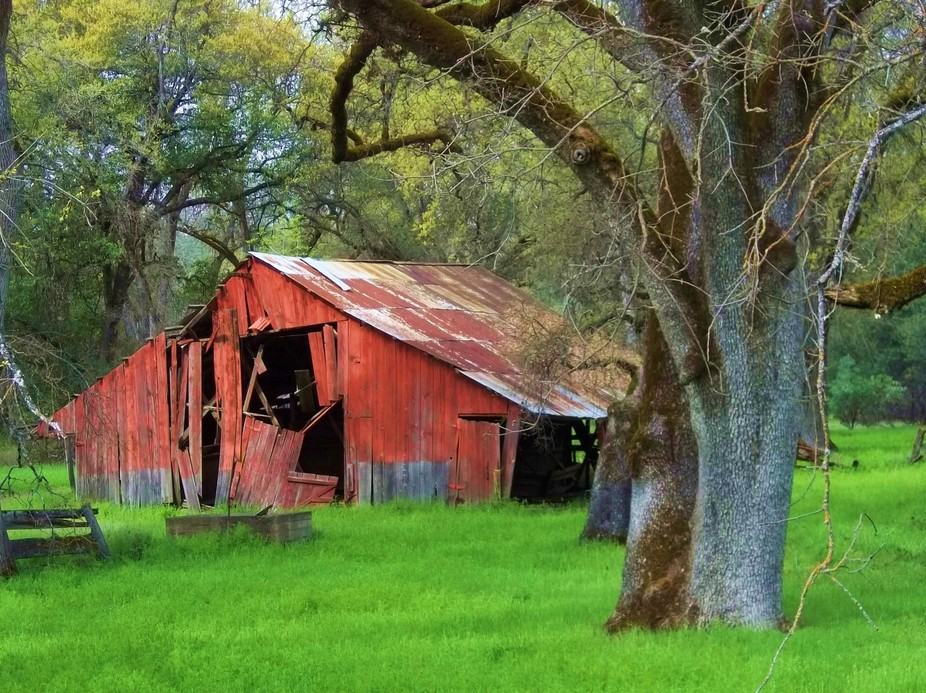 Old barn in Northern California.