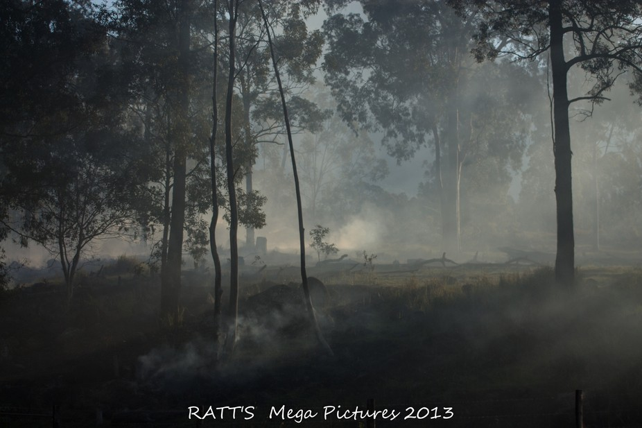 taken at Mt. barney . there was a bush fire or burn off happening and the light was setting.. jus...