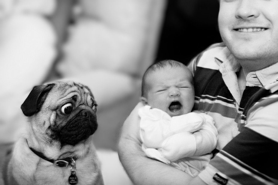 All 3 different facial expressions = priceless. My brother showing off his perfect new family - t...