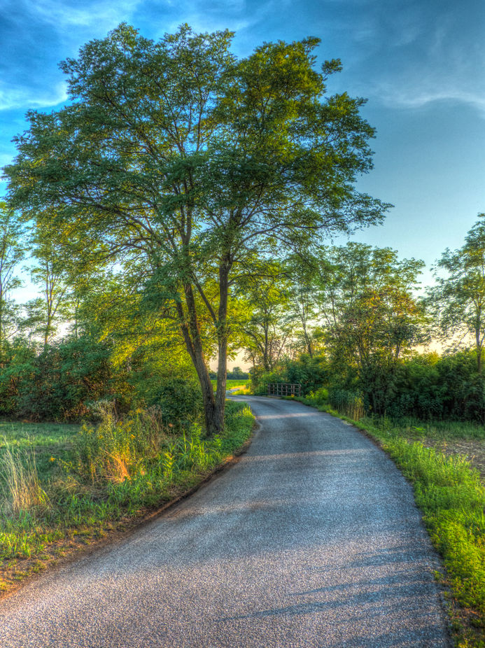 "A little road in the countryside. Processed to give it a ""fairytale"" picture aspect."
