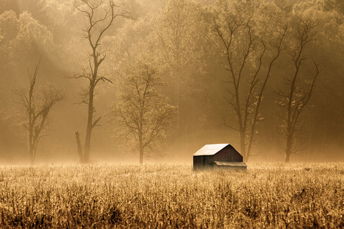 Foggy Morning by AaronShaver - Rule Of Thirds Photo Contest v4