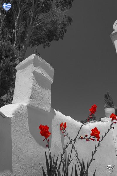 Beautiful Red
