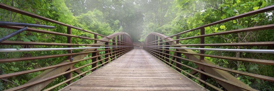 The Tree Bridge in Kentucky, USA -  www.facebook.com/craigbillphotography - CraigBill.com