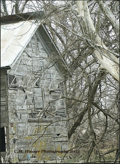 The Old Wooden Side of the House