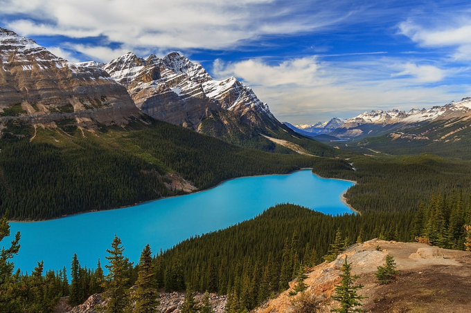 Peyto Lake by patrick9x9 - National Parks Photo Contest
