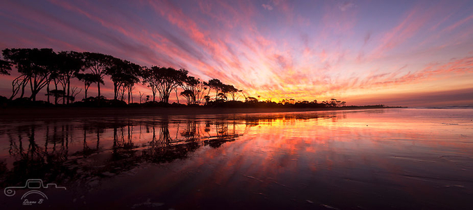 Breathtaking Beauty by DonnaBaileyPhotography - Discover Oceania Photo Contest