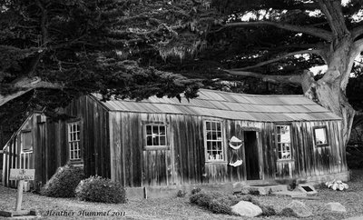 Whalers Cabin BW