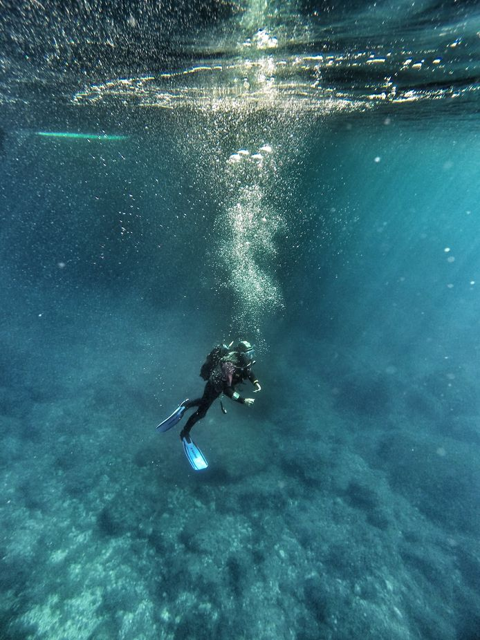 Diving by julielly - Around the World Photo Contest By Discovery