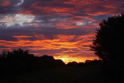 Hart Sunrise