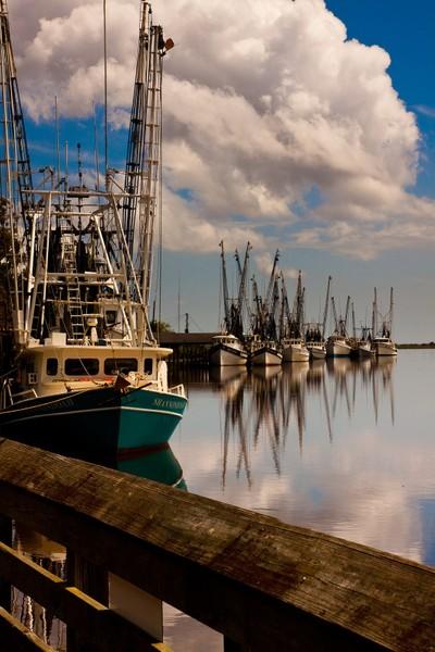 Calm Harbor