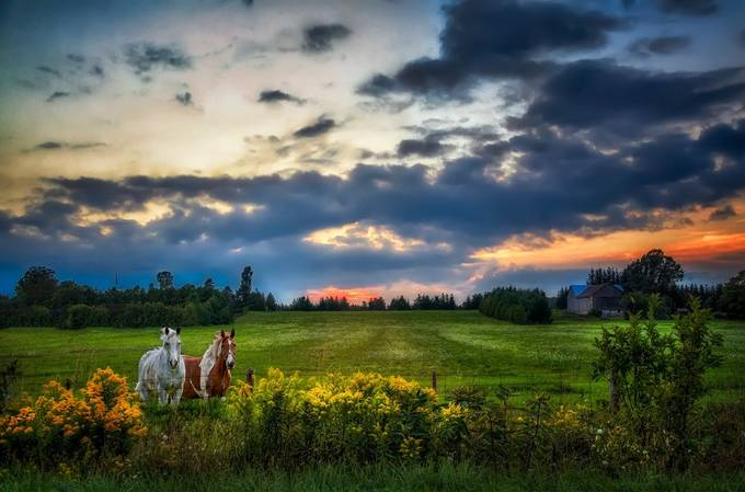 Sunset Farm by PaulMurphy - Lost In The Field Photo Contest