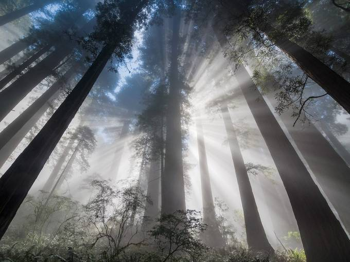 Streams of Light by northcoastgreg - Playing With Light Photo Contest