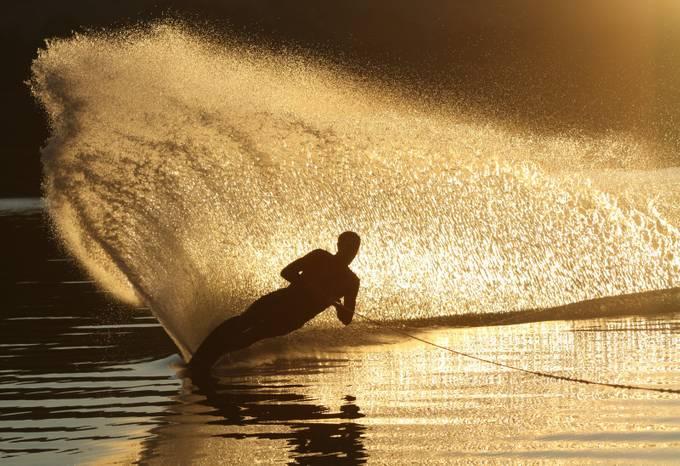 Golden backdrop by freshtake - Healthy Lifestyles Photo Contest