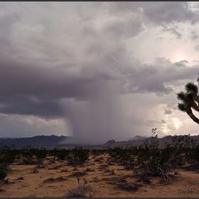 Storm cell letting loose over the Mojave desert.