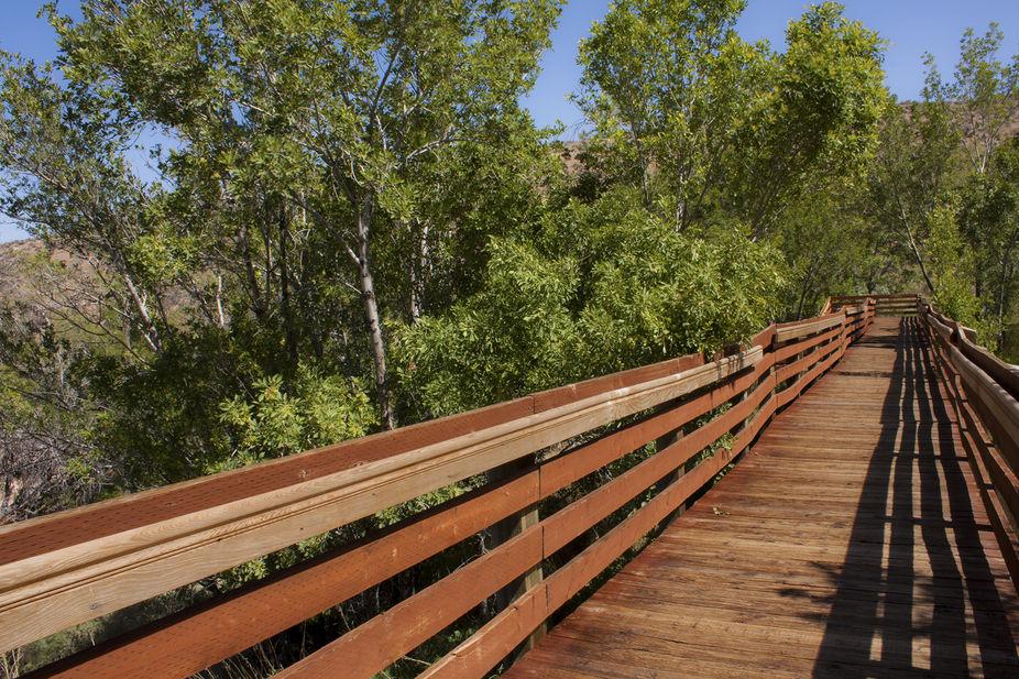 Calico Bridge