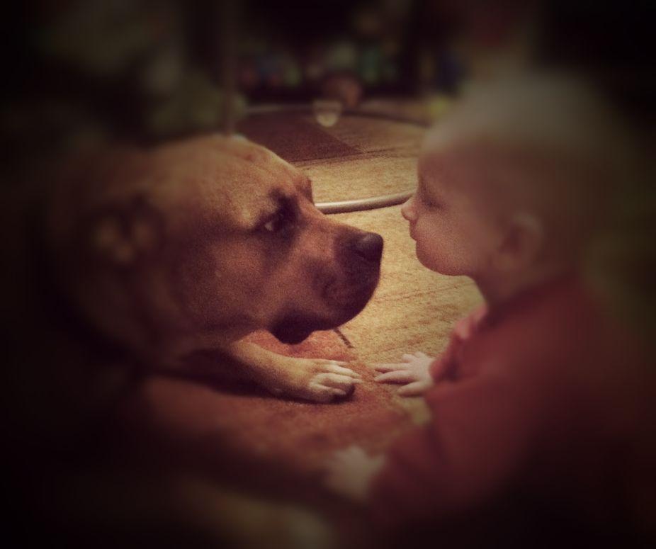 The best babysitter