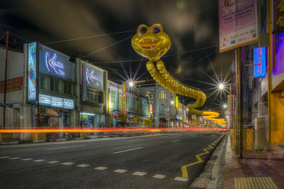 lunar year of the snake