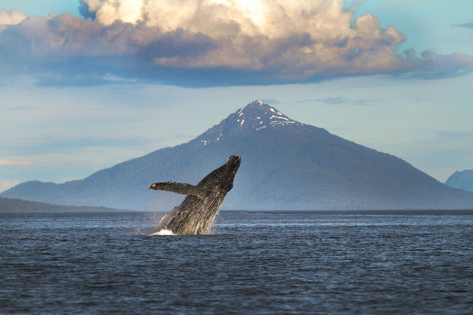 Alaska 2010-104 by KevinColton - Large Photo Contest