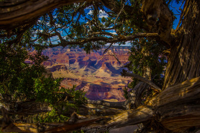 Naturally Framed Grand Canyon View