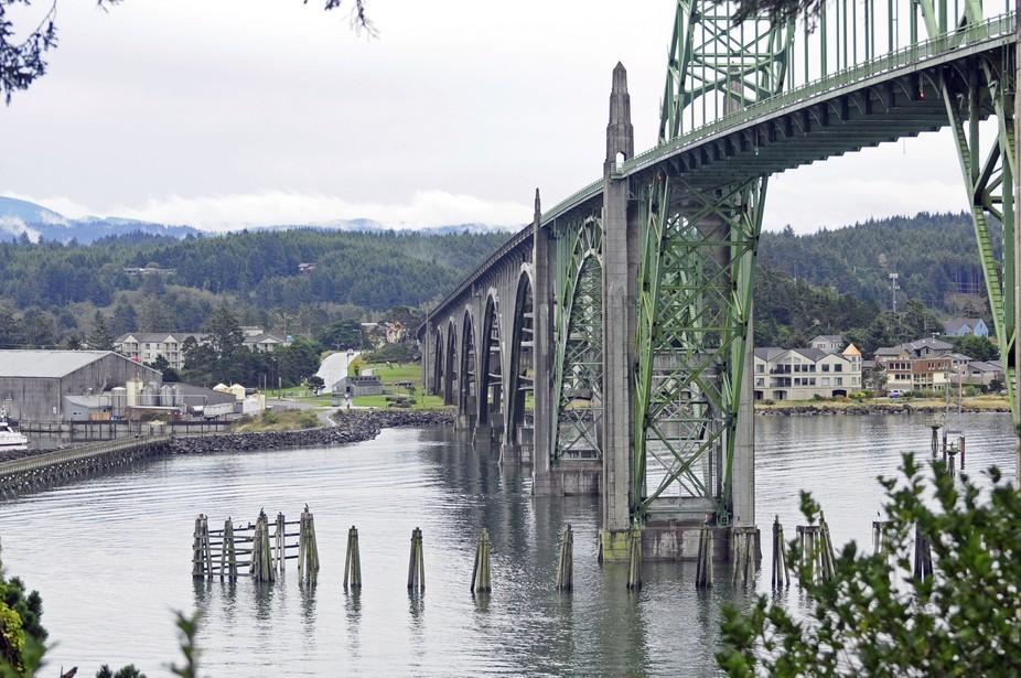 Newport Bridges Everywhere