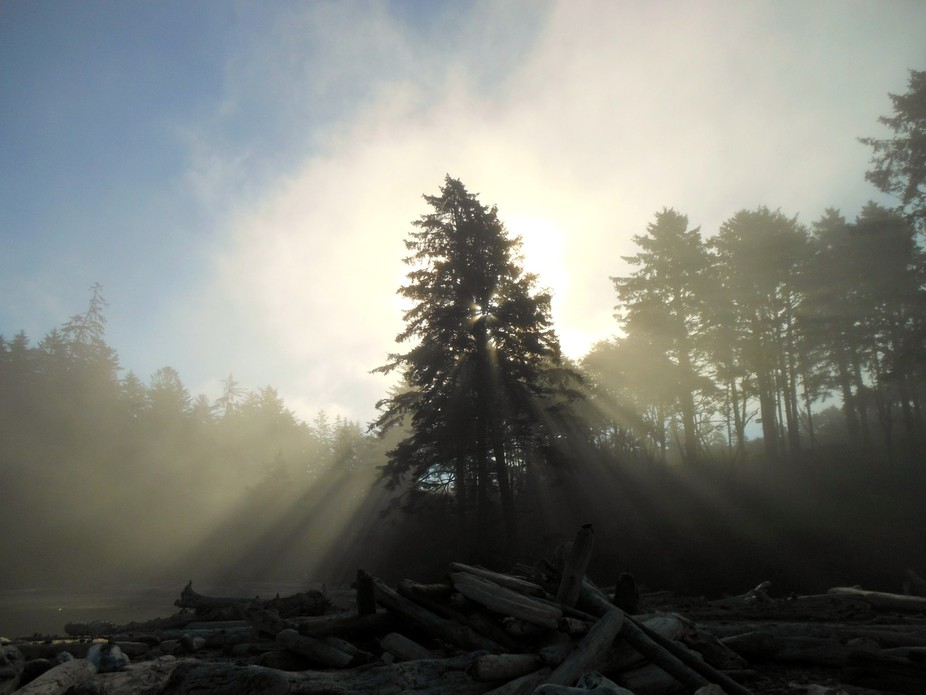 Finding the entrance to Rialto beach was incredibly easy, but when it came time to leave, the fog...