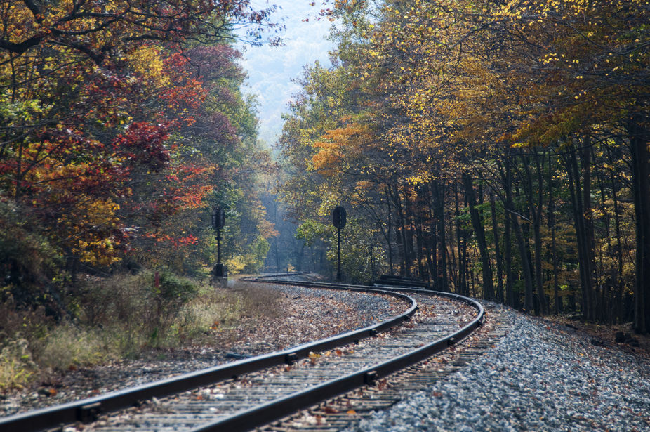 Lucky enough to catch the leaves at peak on the tracks.