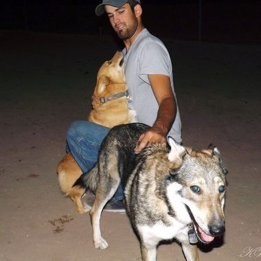 the man and his dogs