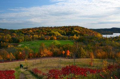 Autumn in Maplewood
