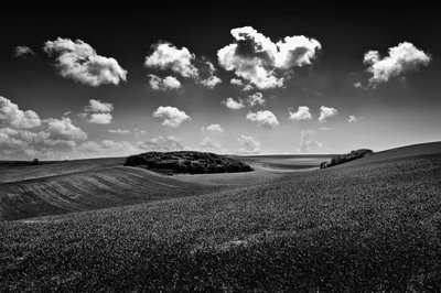 Fields-of-Clouds
