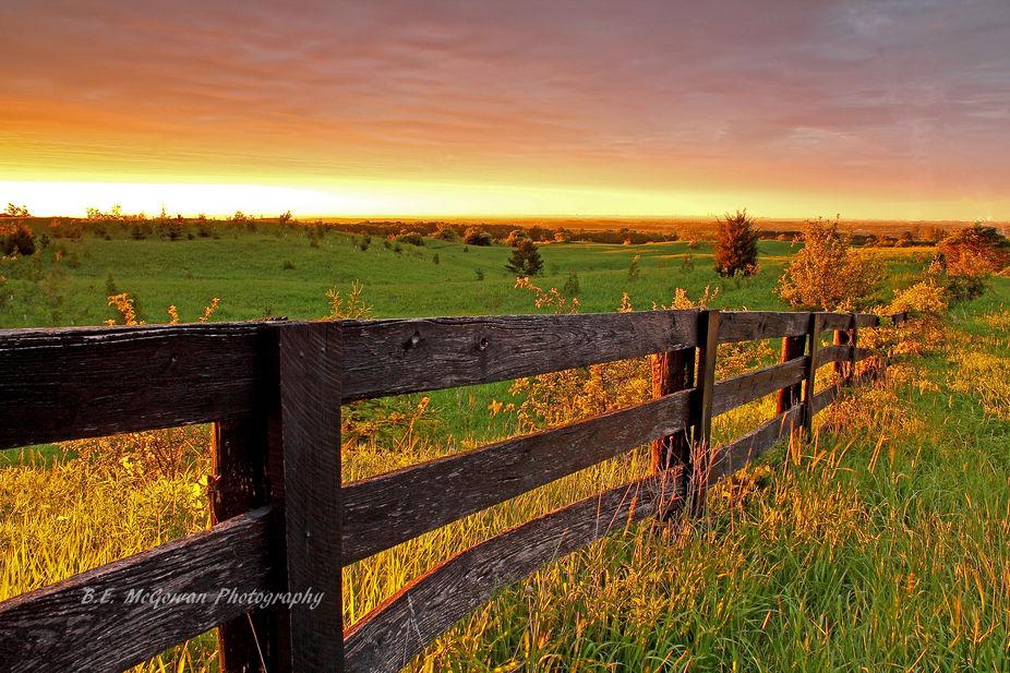 dawn breaking over a field