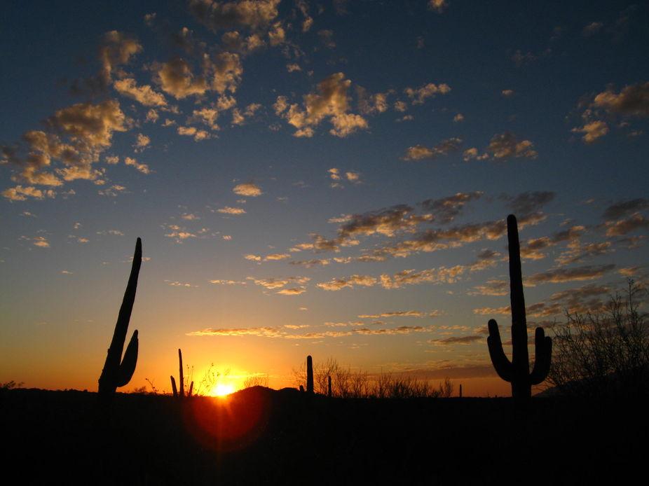 Tucson Sun