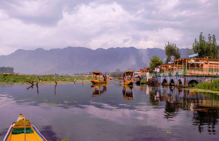 Floating market, Dal lake