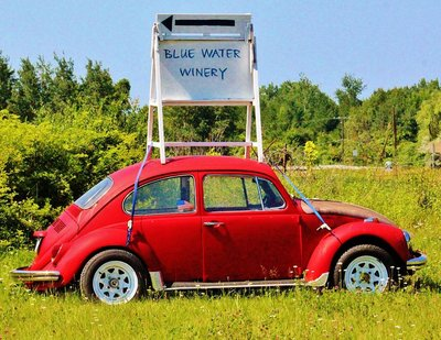Blue Water Winery