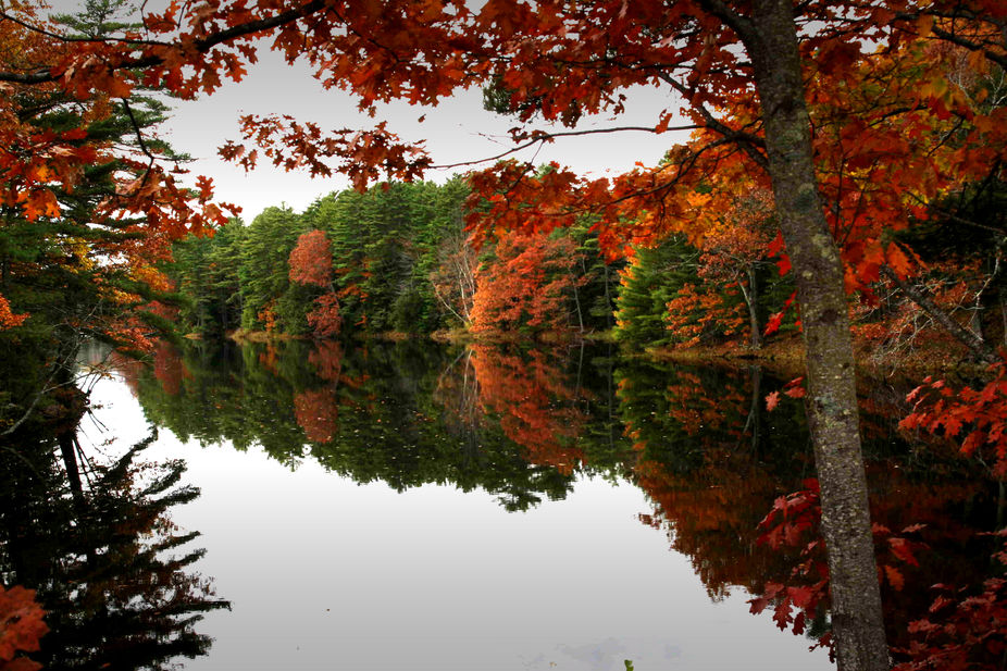 On the back roads of Maine a holding pond for an old water plant