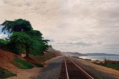 the-coast-line
