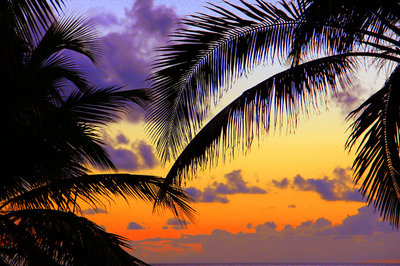 Cuban sunrise