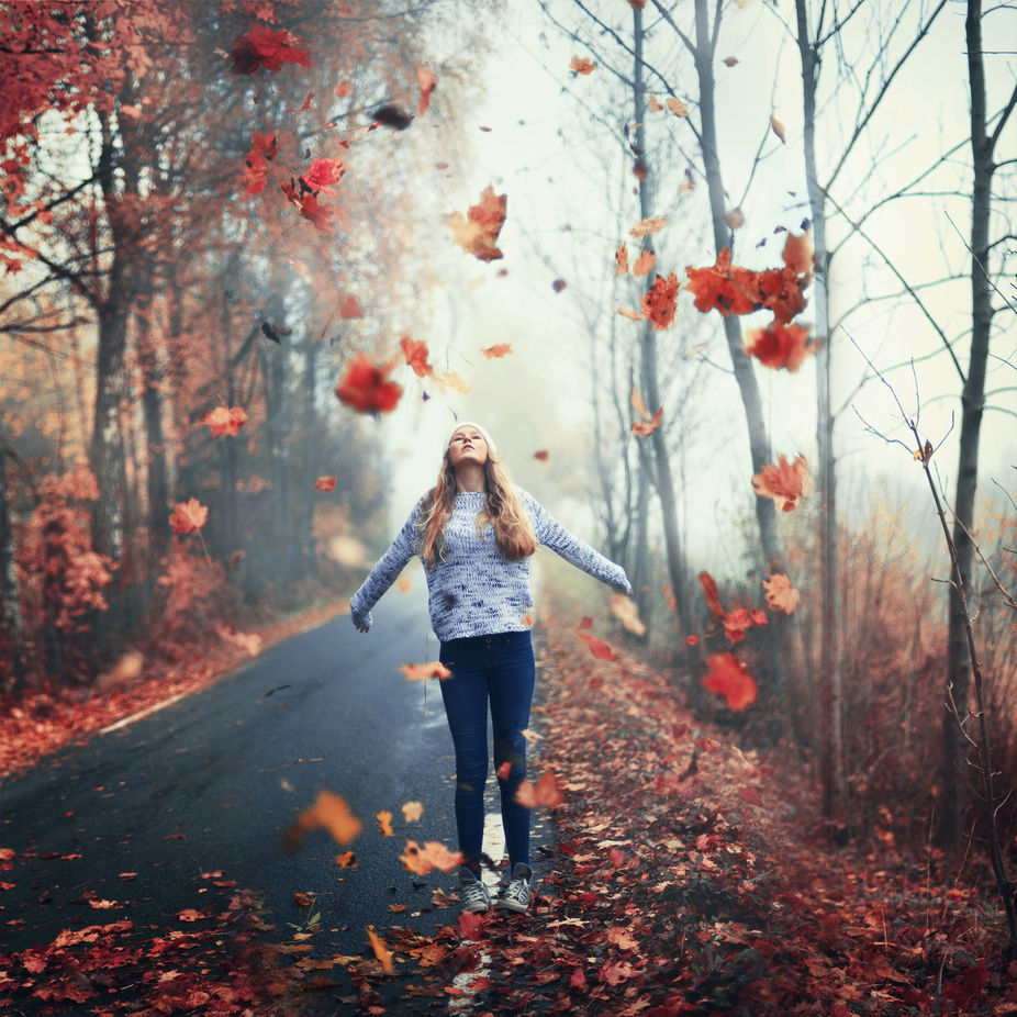 to let go by bildevilde - Fall 2017 Photo Contest