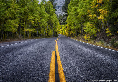 Highway 158, Fall Color