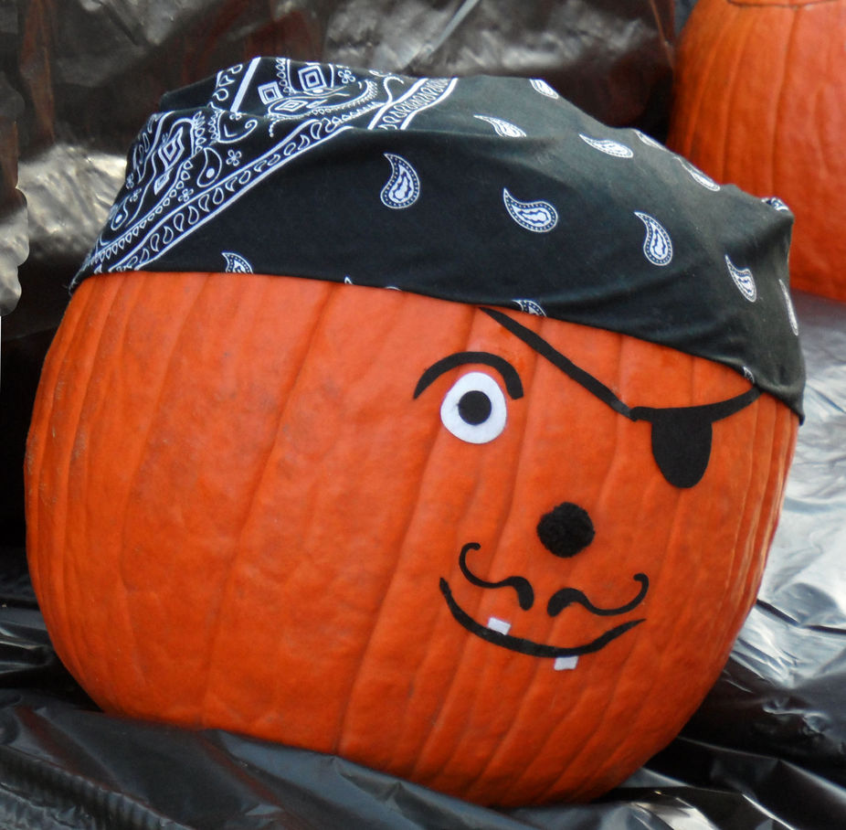 Pirate jack o lantern