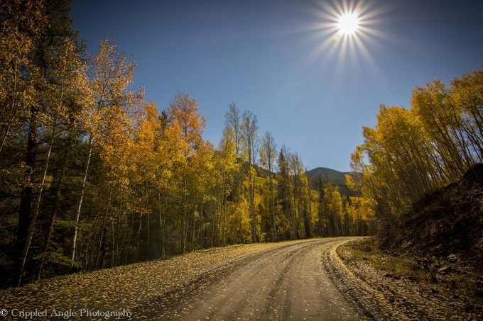 Colorado Gold by crippledangle - Composing with Curves Photo Contest