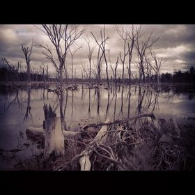 out in the country, dead lake - 2012