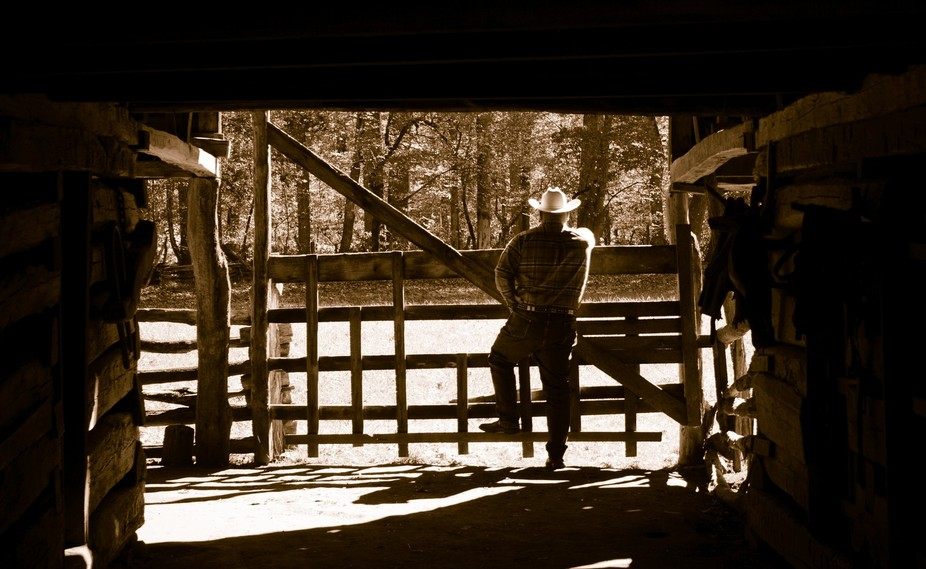 Looking out at the Ranch