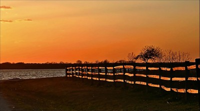 Fence at sunset