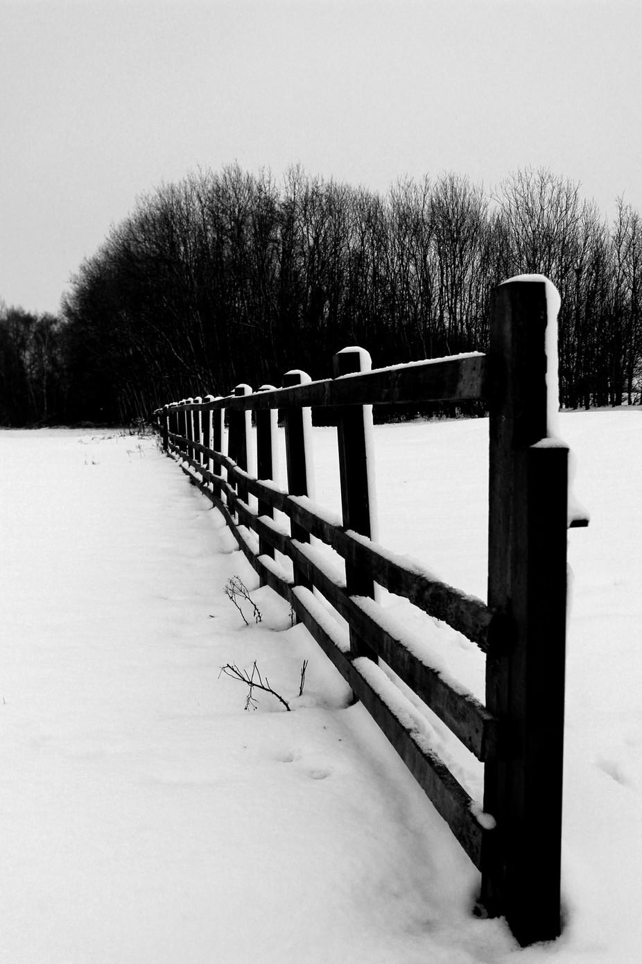 Snowy day in Northampton.