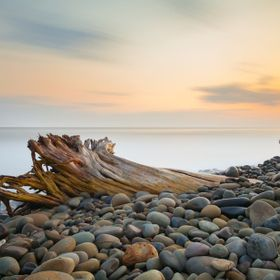 Sunset long exposure view of large driftwood and coastal rocks in Ventura, CA