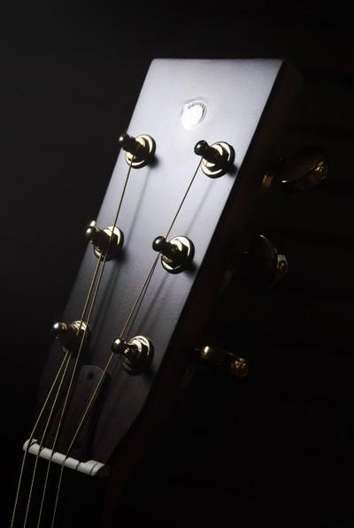 Secco Guitar Headstock